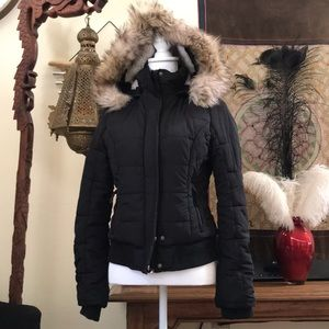American Eagle Outfitters Hooded Coat
